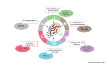 イオンチャネルと癌
